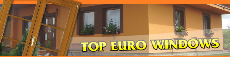 TOP EURO WNDOWS logo
